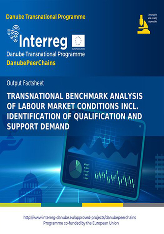 Transnational benchmark analysis of labour market conditions